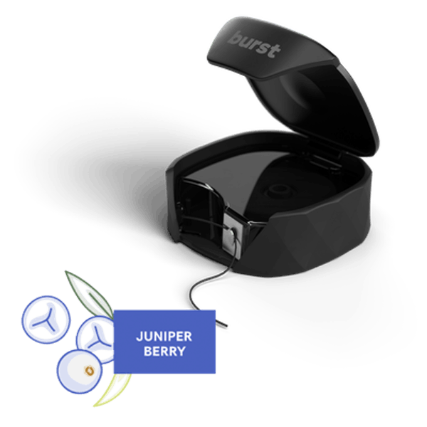 BURST Dental Refillable Floss Set - Juniper Berry - Black